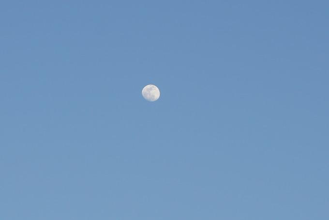 ソニーα5100の作例紹介「月」