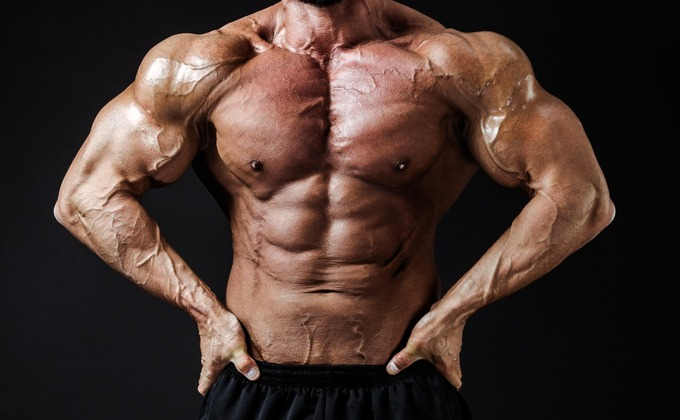 腹筋ローラーで鍛えよう